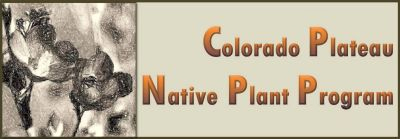 Colordo Plateau Native Plant Project logo